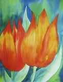 Tulipes oranges Image libre de droits