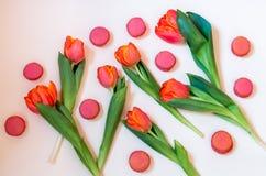 Tulipes oranges et biscuits roses de macaron Image stock