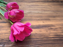 Tulipes roses, arrangement floral sur le fond en bois de vieux conseils et un espace pour des messages Fond pour le ` s de mère Photos libres de droits
