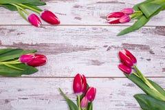 Tulipes roses au-dessus de table en bois blanche minable Photographie stock libre de droits
