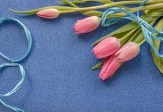 Tulipes roses avec le ruban bleu sur le fond bleu de scintillement avec l'espace de copie images libres de droits