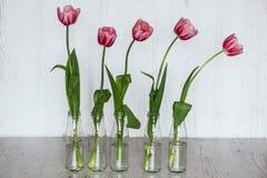Tulipes roses dans des bouteilles en verre sur le fond en bois clair Image libre de droits