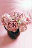 Tulipes roses dans le vase avec des couleurs fanées Photo stock