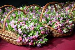 Tulipes roses dans un plan rapproché de panier Photographie stock