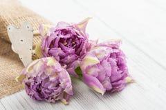 Tulipes roses et support en forme de coeur de serviette Photo libre de droits