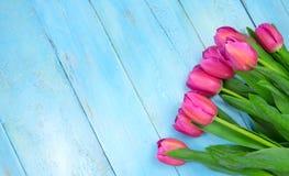 Tulipes roses sur le fond bleu en bois Vacances de conception, le 8 mars, jour du ` s de mère L'espace plat de configuration et d Images libres de droits