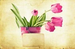 Tulipes roses sur le fond de vintage Image libre de droits