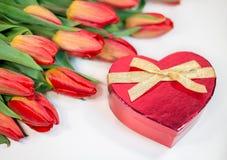 Tulipes rouges avec le cadeau de coeur d'isolement sur le fond blanc Images stock