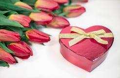 Tulipes rouges avec le cadeau de coeur d'isolement sur le fond blanc Photo libre de droits