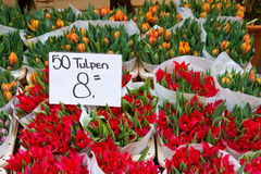 Tulipes rouges colorées en vente Images libres de droits