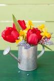 Tulipes rouges dans la boîte d'arrosage de vintage Image stock