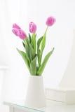 Tulipes dans la chambre Photos libres de droits