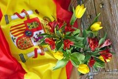 Tulipes rouges et jaunes : Drapeau espagnol Images libres de droits