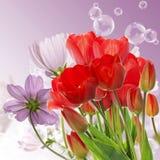 tulipes rouges fraîches sur le fond abstrait de nature de ressort Image libre de droits