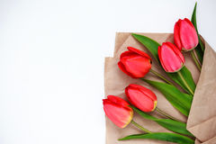 tulipes rouges sur un fond blanc Photographie stock