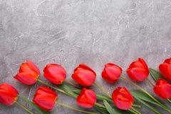 Tulipes rouges sur un fond concret gris photos stock