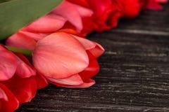 Tulipes sur la fin en bois de fond  Images stock