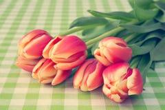Tulipes sur la nappe à carreaux Photos stock