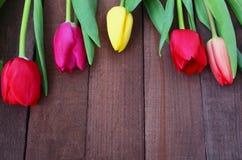 Tulipes sur la surface en bois avec l'espace de copie Photographie stock