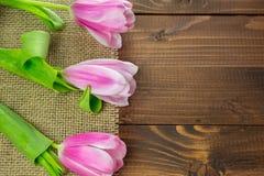 Tulipes sur le fond en bois Images libres de droits