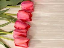 Tulipes sur le fond en bois Photos libres de droits