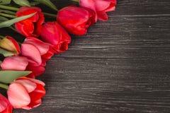 Tulipes sur le fond en bois Photographie stock