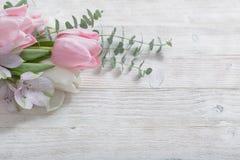 Tulipes sur le fond en bois blanc Le d de la femme ou de la mère de concept photo libre de droits