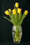 Tulipes sur le noir Image libre de droits