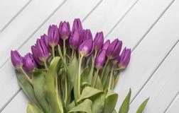 Tulipes sur les conseils blancs Photographie stock