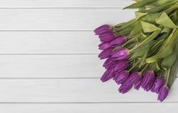 Tulipes sur les conseils blancs Photos stock