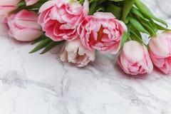 Tulipes sur un fond de marbre photos libres de droits