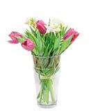 Tulipes violettes, freesias blancs, bouquet, arrangement floral dans un vase transparent rempli avec de l'eau, fond d'isolement e photographie stock libre de droits