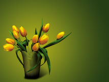 Tulips. A tulips on green background Stock Photo
