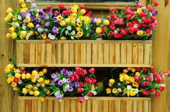 Tulips. Colorful tulips on the wooden wall royalty free stock photography