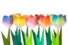 Tulips. Origami flowers on white background. Focus on the front row stock photos