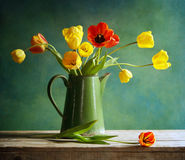 Tulips. Still life with tulips bunch Stock Photography
