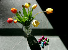 Tulips. Vase with tulips with sun and shadow Stock Image