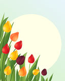 Tulips. An illustration of red orange and yellow springtime tulips with green foliage on a blue green background with a big yellow sun Royalty Free Stock Photo