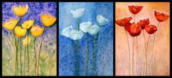 Tulips. Collage of three aquarelle paintings