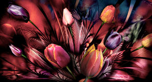 Tulips abstrackt. Bouquet art vision Royalty Free Stock Photography