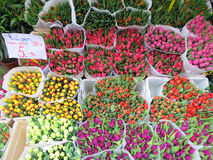 Tulips from Amsterdam. Tulips for sale on a flowermarket in Amsterdam Stock Images