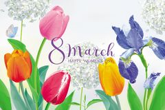 Free Tulips And Spring Flowers For 8 March Vector Greeting Card Stock Images - 139106884