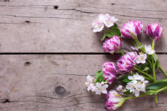 Tulips and apple tree flowers on aged wooden  background. Royalty Free Stock Image