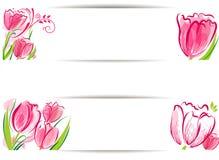 Tulips backgound Stock Photos