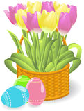 Tulips basket Royalty Free Stock Images