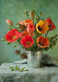 Tulips. Beautiful bouquet of red tulips on green background stock image