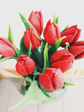 Tulips. Beautiful tulips for mother's Day Royalty Free Stock Photography