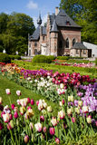 Tulips in Belgium Stock Photos