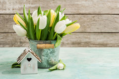Tulips, bird house on concrete background. White and yellow tulips, bird house on turquoise concrete background. Spring in the garden background. Copy space for stock photos
