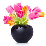 Tulips in a black flower vase Royalty Free Stock Photos